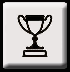 Award Icon sw