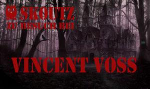 Banner Vincent Voss