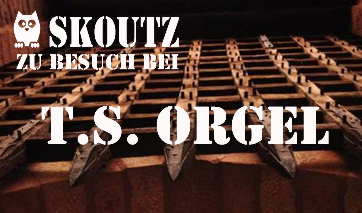banner-t-s-orgel
