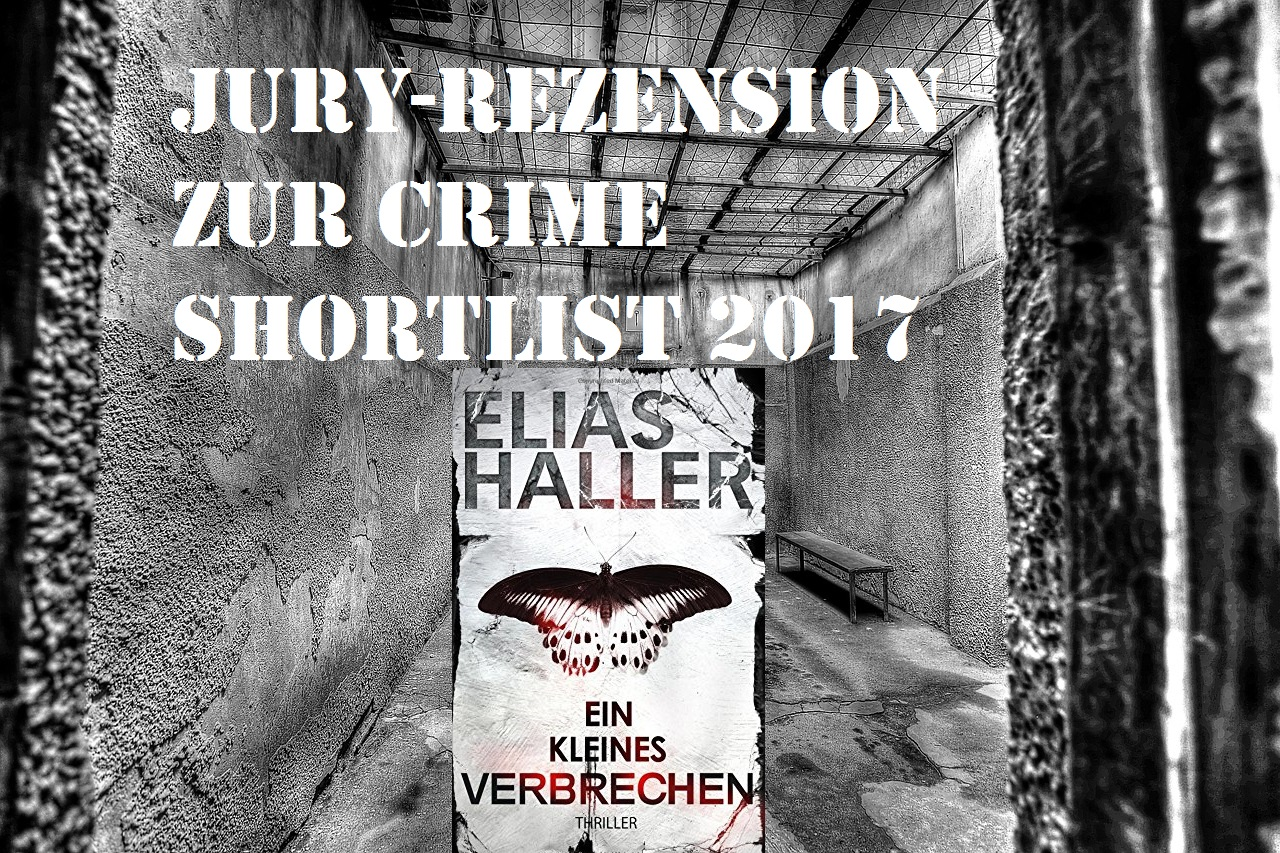 Ein kleines Verbrechen von Elias Haller