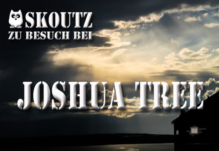 Interview Joshua Tree