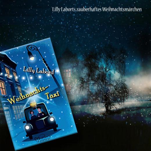 Lilly Labort - Weihnachtstaxi